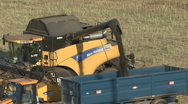 Stock Video Footage of New Holland combine harvester finishes unloading rapeseed.