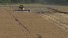 New Holland combine harvester at work on rapeseed. Stock Footage