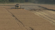 Stock Video Footage of New Holland combine harvester at work on rapeseed.