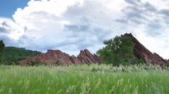 Grasses sway with sandstone cliffs in background. Stock Footage