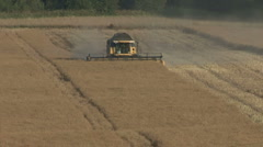 Timelapse of New Holland combine harvester at work on rapeseed. Stock Footage
