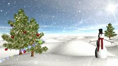 Winter Scene 04 Light Snow - stock footage