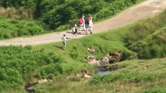 Family walking in the Lake District Stock Footage