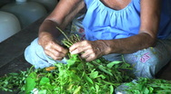 Old Asian Woman Cutting Vegetables Stock Footage
