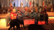 Thai Culture Show With Live Elephants Stock Footage