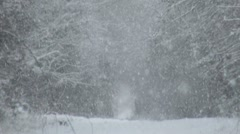 Heavy Snowfall Stock Footage