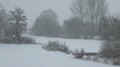 Snowy Winter Park and Lake Stock Footage