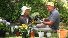 Aged couple gardening together Stock Footage