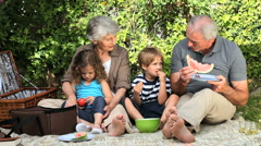 Grandparents and grandchildren feasting at a picnic - stock footage