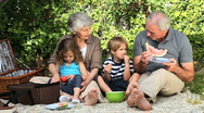 Grandparents and grandchildren feasting at a picnic Stock Footage
