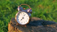 Stock Video Footage of classical alarm clock on stub ringing against grass