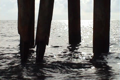 The bridge over the sea, piles Stock Footage