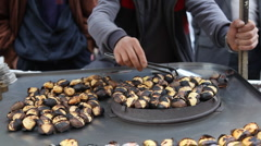 Roasting chestnuts HD 1080p Stock Footage