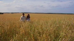 Dating in field - stock footage
