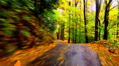 Rainy autumn road timelapse 02 Stock Footage