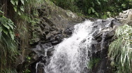 Stock Video Footage of Annandale Waterfall, Grenada