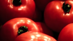 Tomatoes 01 Stock Footage