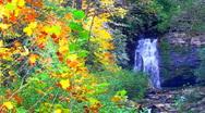 Autumn waterfall Stock Footage