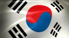 South Korea Flag - HD Loop Stock Footage