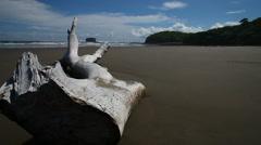empty beach in nicaragua - stock footage