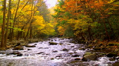 autumn river 02 - stock footage