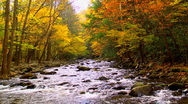 Autumn river 02 Stock Footage
