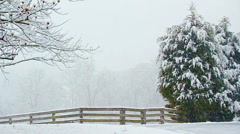 Snow Scene Stock Footage