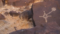 Petroglyph National Monument  9489 Stock Footage