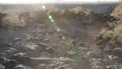 Petroglyph National Monument  9440 Stock Footage