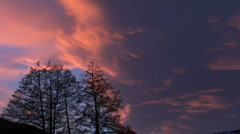 Sunset timelapse clouds trees reflection twilight Stock Footage