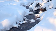 Stock Video Footage of Stream in the forest, winter season.