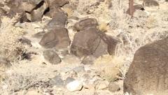New Mexico Petroglyphs 9391 Stock Footage