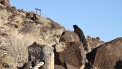 New Mexico Petroglyphs 9387 Stock Footage