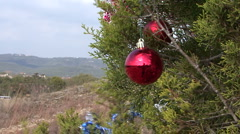 Roadside Christmas Trees In Austin, Texas - stock footage