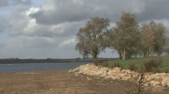 Trees by reservoir move in strong wind at Rutland Water. - stock footage