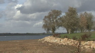 Stock Video Footage of Trees by reservoir move in strong wind at Rutland Water.