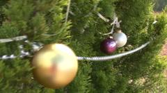 Roadside Christmas Trees In Austin, Texas Stock Footage