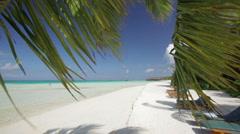 Waving palm leaf on a white sandy beach Stock Footage