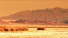 Desert-dry lake global warming - stock footage