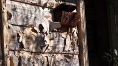 New Orleans-Katrina-8b54,55,56 Stock Footage