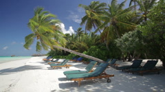Sunlounger on a palm beach Stock Footage