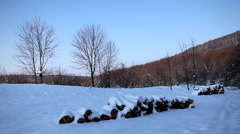 Winter 0074 Winter Season, Hills in Snow, Woods in Forest Stock Footage