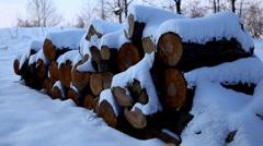 Winter 0077 Winter Season, Hills in Snow, Woods in Forest Stock Footage