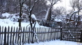 Winter 0087a Winter Season, Dog barking , Old House in Village in Snow Footage
