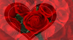 HD Valentines Day Roses Background Stock Footage