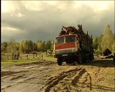 Transportation of wood Stock Footage