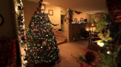 DOLLY INTO CHRISTMAS TREE Stock Footage