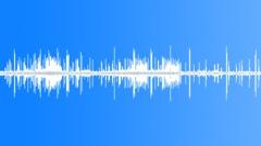 Chorus of Orinoco Lime Treefrogs (Sphaenorhynchus lacteus) - sound effect