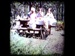 Family Picnic in the woods Stock Footage