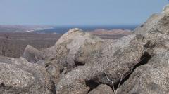 Stock Video Footage of Baja Crane Rocks To Sea Of Cortez